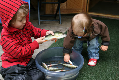 Fina fiskar